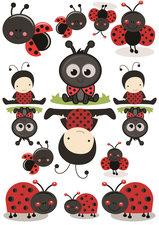 Fietsstickers ladybug baby