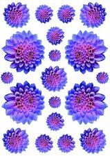 Fietsstickers bloemen Dahlia blauw/rood